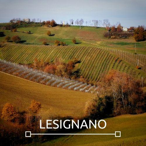 Zona Lesignano